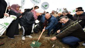 """""""Orman İzmir""""in ilk fidanları dikildi"""