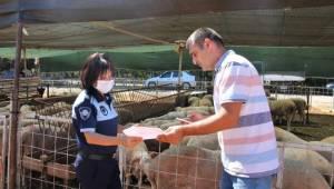 Menderes'te Kurban Satış Yerleri Hazır